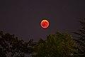 Luna rossa 05 (28805270677).jpg