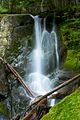 Lush waterfalls (6444795863).jpg