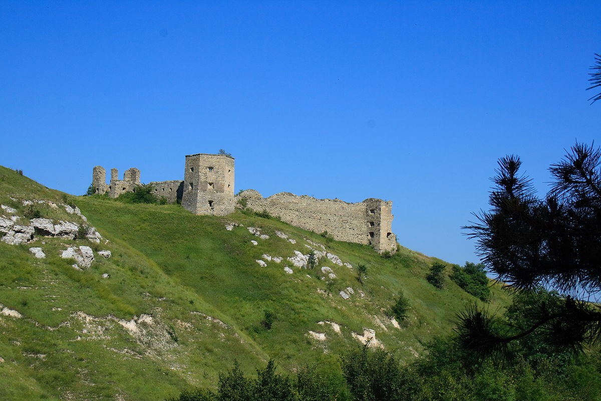 Znalezione obrazy dla zapytania kudryńce zamek ukraina