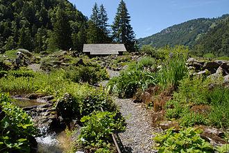 Musée et jardins botaniques cantonaux - View of the alpine garden, La Thomasia, near Bex, Switzerland