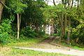 MOs810, WG 2014 48, powiat obornicki (stairs to Welna).JPG