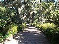 Maclay Gardens SP path03.jpg