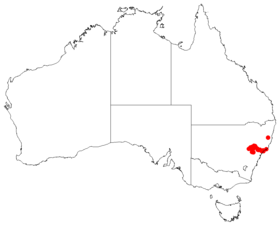 Macrozamia reducta Dist Map20.png