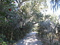 Magnolia Plantation and Gardens - Charleston, South Carolina (8556532256).jpg