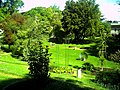 Mai - Botanischer Garten Freiburg - 2016 - panoramio (13).jpg