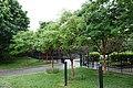 Main St 56th Av td 18 - Kissena Corridor Pk W.jpg