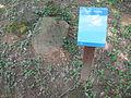 Malířova zahrada v Tatobitech 06.JPG