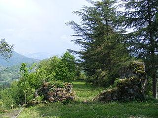 Mamuka tvirtovė