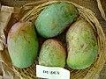 Mango DouDouce Asit fs8.jpg