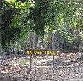 Manuka nature trail.jpg