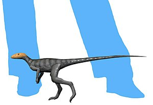 Marasuchus - Life restoration (without feather-like filaments).