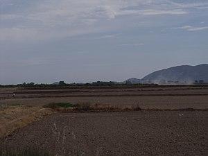 Marjal i Estany de la Ribera Sud del Xúquer 04.JPG