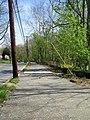Matthew Henson Trail-3.jpg