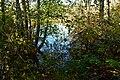 Mercer Slough Nature Park 02.jpg