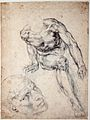 Michelangelo - Study of a male Nude, separate Study of his Head.jpg