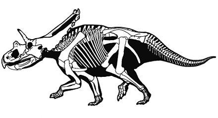 Mojoceratops