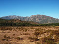Moltifao-plaine de Campo Longo.jpg