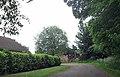 Monksthorpe Lane entering Candlesby (geograph 3528267).jpg