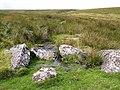 Moorland near Buckland Ford - geograph.org.uk - 1471240.jpg