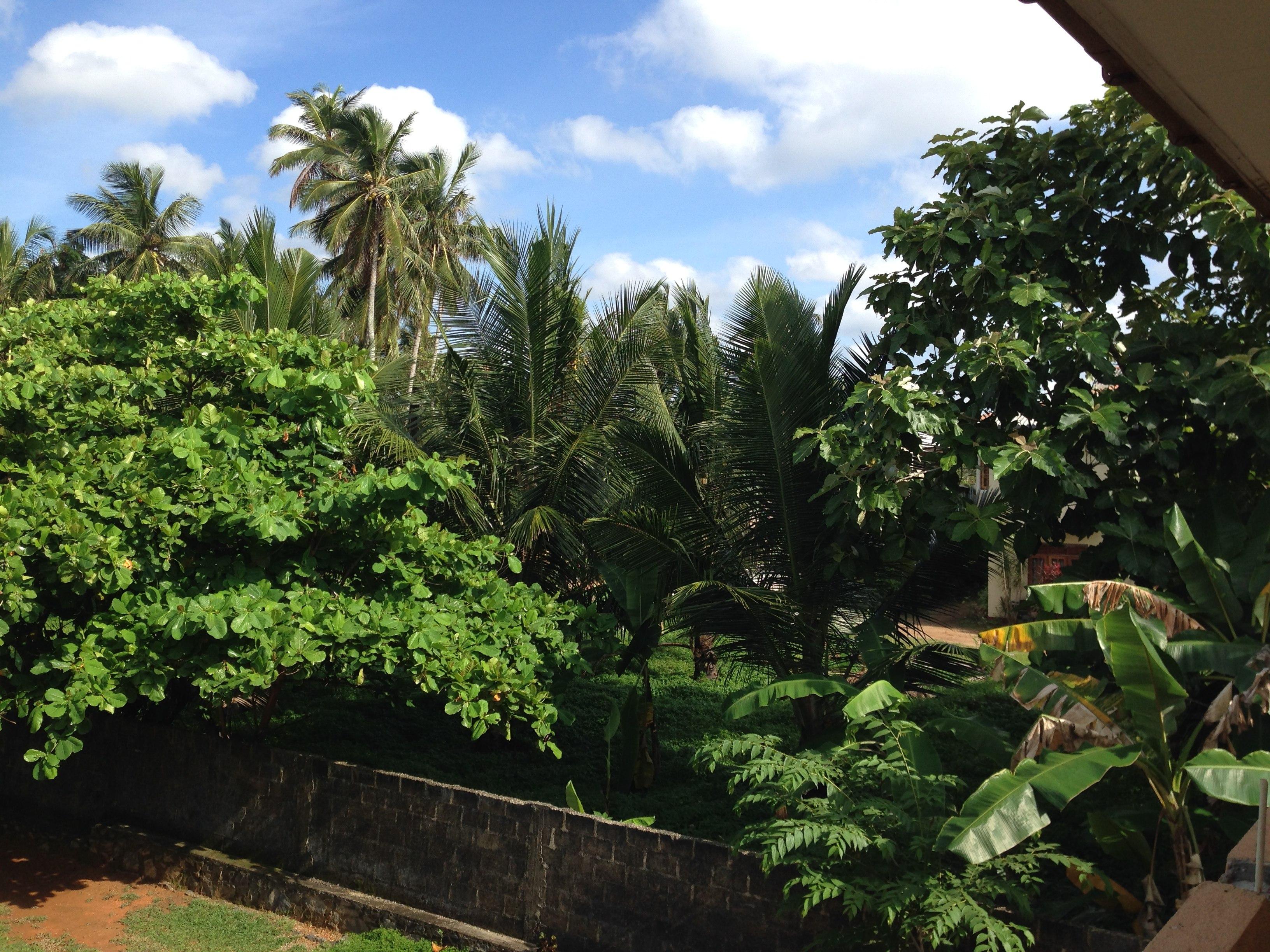 Moratuwa Sri lanka