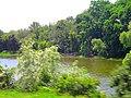 Morse Pond - panoramio.jpg