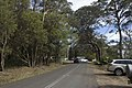 Mount Wilson NSW 2786, Australia - panoramio (21).jpg