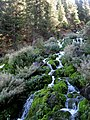 Mountain stream (8064367383).jpg