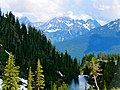 Mt. Baker-Snoqualmie National Forest (9292838814).jpg