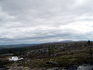 remote areas of Finland which are not strictly nature reserves, set up in 1991