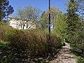 Näsinkallion juurella - panoramio.jpg