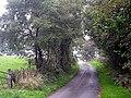 NCR 8 and 81 near Blaen Pathiog - geograph.org.uk - 968520.jpg