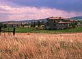 NRCSCO02008 - Colorado (1591)(NRCS Photo Gallery).jpg