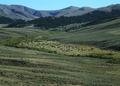 NRCSMT01028 - Montana (4905)(NRCS Photo Gallery).tif