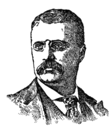 strenuous life essays and addresses theodore roosevelt