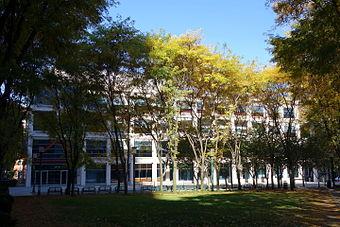 New York University Libraries - Wikiwand