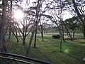 Naivasha Sopa lodge (7513177484).jpg