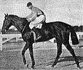 Natalio Cirilo Banegas. La Plata Hippodrome. 8 January, 1913.jpg