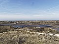 Nationaal Park Kennemerland (39560118800).jpg