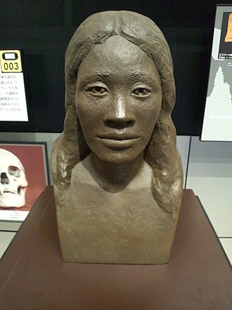 Lapita culture - Reconstruction of the face of a Lapita woman. National Museum of Ethnology, Osaka