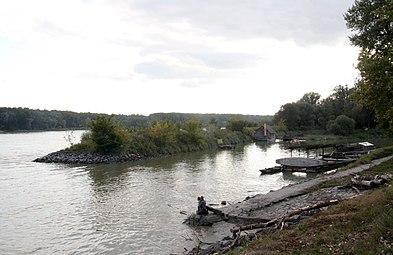 Nationalpark Donau-Auen Orth an der Donau 2012 Schiffmühle 2.jpg