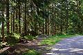 Naturpark Ötztal - Landschaftsschutzgebiet Achstürze-Piburger See - 30.jpg