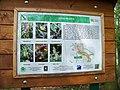 Naučná stezka Mýto 5 - flora PR Mýto.jpg