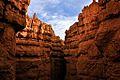 Navajo Loop Trail, Bryce Canyon National Park (3447058764).jpg
