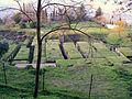 Necropoli crocifisso del tufo 2.jpg