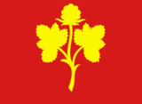 Nesseby flag.png
