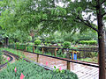 New Orleans Botanical Garden walkway train.jpg