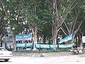 No Chinese Educational Attainment and One-China Single Market, DPP in Kaohsiung City 20080322.jpg