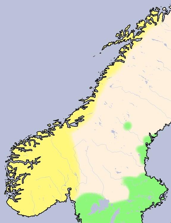 Norwegen Wikingerzeit unbeschriftet