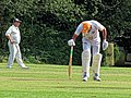 Nuthurst CC v. The Royal Challengers CC at Mannings Heath, West Sussex, England 25.jpg