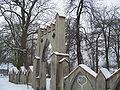 Old Cemetery Opatowek.JPG
